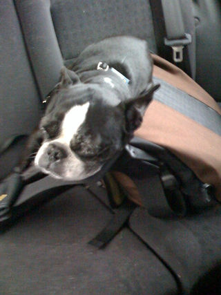 Sam travelling