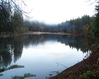 Lake_madrone_lake_top