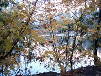 Lake_madrone_sunset