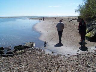 Bolinas_beach_6