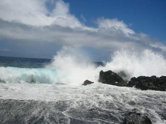 Ecf_hawaii_3