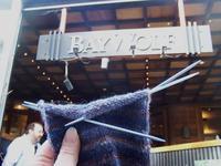 Sock_at_bay_wolf_1